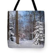 Winter Perfection Tote Bag