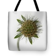Winter Pincushion Plant Tote Bag