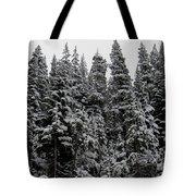 Winter Pine Spires Tote Bag