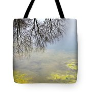 Winter Pond Reflections Tote Bag