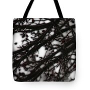 Winter Rain Tote Bag