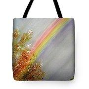Winter Rainbow  Tote Bag