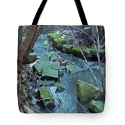 Winter Ravine Tote Bag