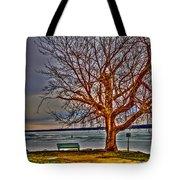 Winter Retreat Tote Bag
