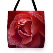 Winter Rose Two Tote Bag