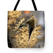 Winter Seed Pod Tote Bag