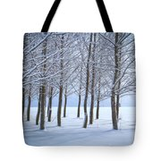 Winter Sentinels Tote Bag