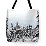 Winter Shangri-la Tote Bag