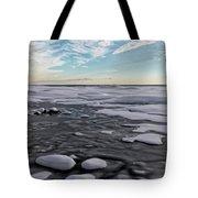 Winter Shoreline Tote Bag