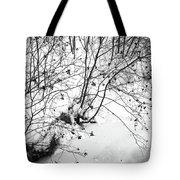Winter Shrubs, New Hampshire Tote Bag