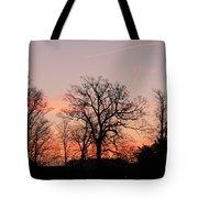 Winter Skies Tote Bag