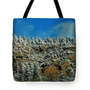 Winter Skyline Tote Bag