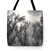 Winter Solstice Utah Tote Bag