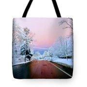 Winter St Tote Bag