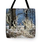Winter Storm Ashley 2015 #2 Tote Bag