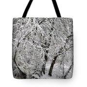 Winter Storm Skylar Tote Bag