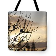 Winter Sun 3 Tote Bag