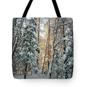 Winter Sun Tote Bag