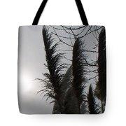 Winter Sun Tote Bag