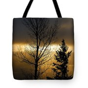 Winter Sunrise 2 Tote Bag