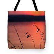 Winter Sunset I Tote Bag