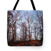 Winter Sunset In Georgia Mountains Tote Bag