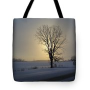 Winter Sunset In Lambton County Tote Bag