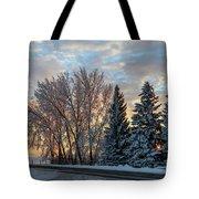 Winter Colors. Tote Bag