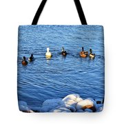 Winter Swim Tote Bag