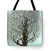 Winter Tree 2009 Tote Bag
