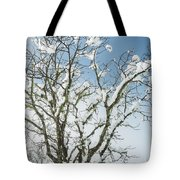 Winter Tree At Berry Summit Tote Bag