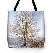 Winter Tree On Shore Tote Bag by Elena Elisseeva