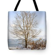 Winter Tree On Shore Tote Bag