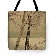 Winter Tree Over Bay Tote Bag