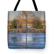 Winter Tree - Walnut Creek Lake Tote Bag