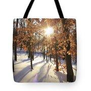 Winter Trees #1 Tote Bag