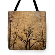 Winter Trees In The Bottomlands 2 Tote Bag
