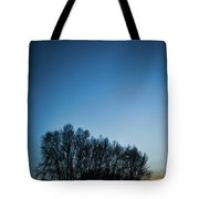 Winter Trees On The Background Of The Night Sky Tote Bag