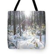 Winter Under The Sun Tote Bag