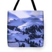 Winter Vista Tote Bag