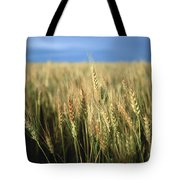 Winter Wheat In Linn, Kansas Tote Bag