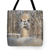 Winter White Alpaca Tote Bag