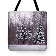 Winter White Magic Tote Bag