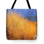 Winter Willows Tote Bag