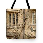 Winter Windows. Tote Bag
