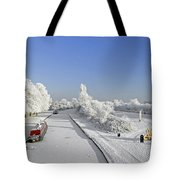 Winter Wonderland Tote Bag by Rod Johnson