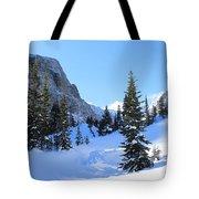 Winter Wonders Tote Bag