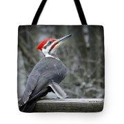 Winter Woodpecker Tote Bag