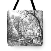 Winter Woods On A Stormy Day 2 Bw Tote Bag