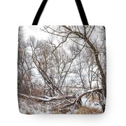 Winter Woods On A Stormy Day 2 Tote Bag